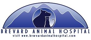 Brevard Animal Hospital